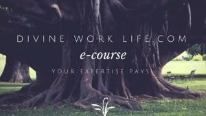 Divine Work Life E-Course